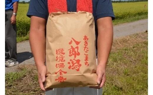 令和2年産 玄米 あきたこまち 5kg 八郎潟町環境保全米