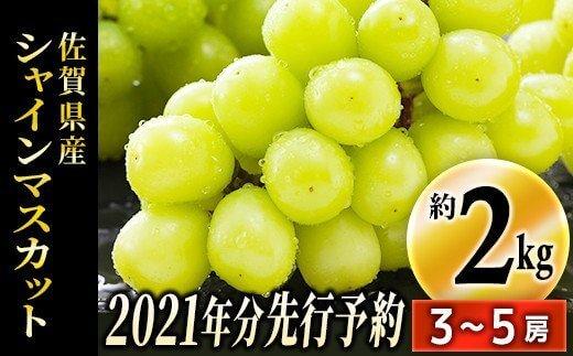 【先行予約】佐賀県産シャインマスカット 約2kg(3~5房)(令和3年収穫分)