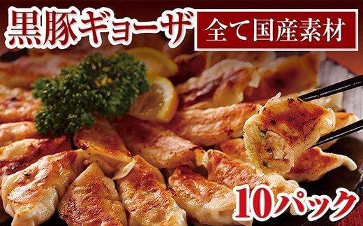 肉汁じゅわ~っ!鹿児島県産黒豚ギョーザ10パック