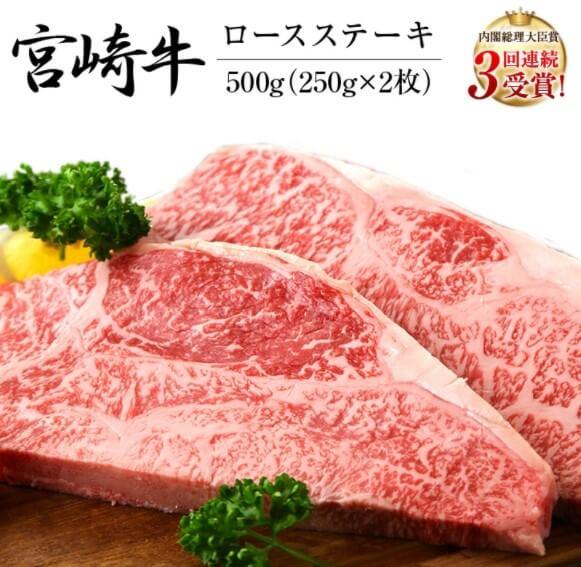 宮崎牛ロースステーキ(250g×2枚)&合挽きハンバーグ(100g×4個)セット《合計900g》