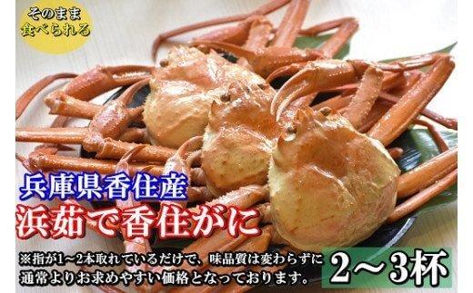 【訳あり】浜茹で香住ガニ