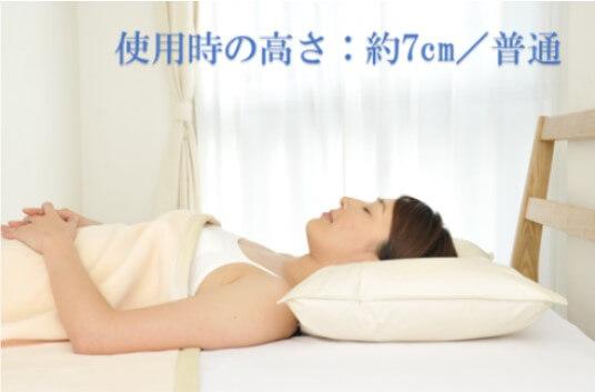 一般的な高さの羽根枕 1個