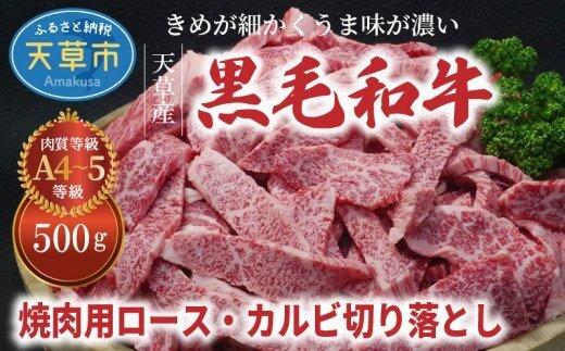 天草産黒毛和牛 焼肉用ロース・カルビ切り落とし 500g