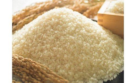 【頒布会】福岡県産ヒノヒカリ(2020年秋収穫のお米)10キロ×12回 定期コース