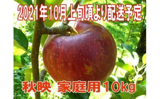 【先行予約】秋映 家庭用 10kg【2021年10月上旬頃より配送予定】