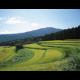 兵庫県 養父市のふるさと納税のご紹介