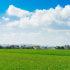 埼玉県 桶川市のふるさと納税のご紹介