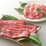 ふるさと納税サイトさとふるの肉ランキングはお得なのか?還元率と評判で検証!!