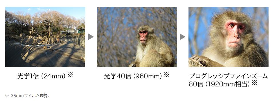 静岡県焼津市の返礼品 Canon PowerShot SX720 光学ズーム