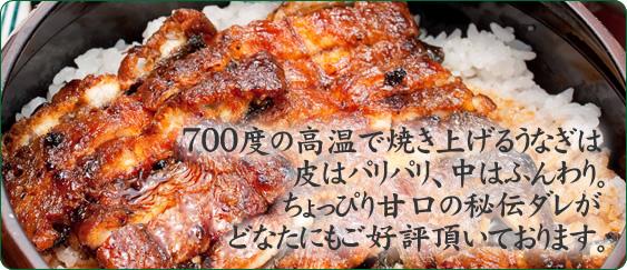 三重県 明和町のうなぎの返礼品 真空パック
