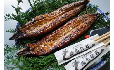 藤うなぎ宮崎県西都市のうなぎの返礼品 かば焼き冷蔵パック
